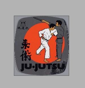 Ju-Jutsu Kampf, metallic