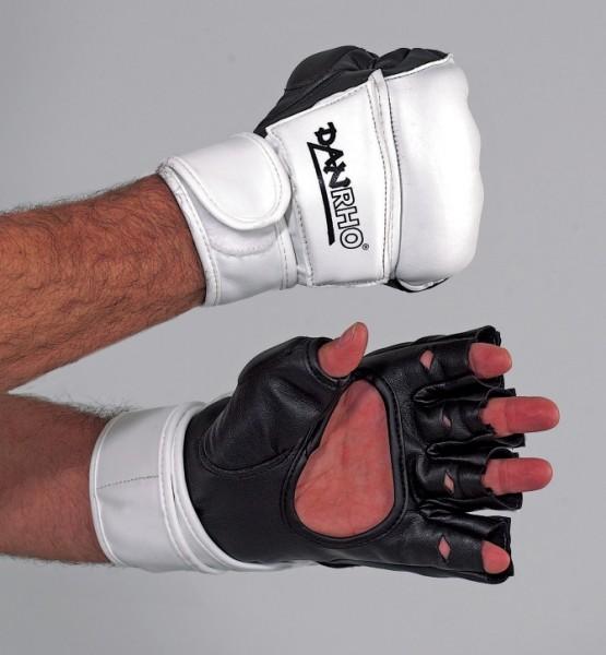 Taekwondo Handschutz by Danrho
