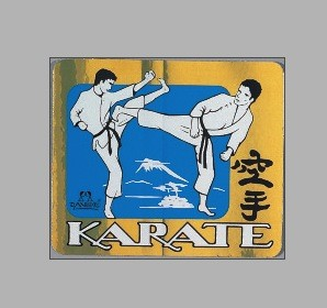 Karate-Kampf, Metallic PVC-Aufkleber by Danrho